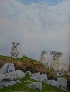 Fine Art Watercolour Commission of Sheep On Achill Island, County Mayo, Ireland By Darren Graham of Ephraim Art Studio