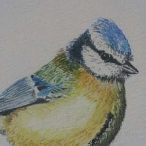 Detail From A Fine Art Watercolour of A Blue