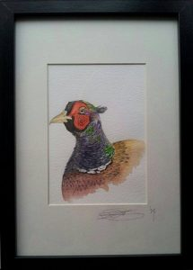 Framed Fine Art Watercolour of an Irish Phesant By Darren Graham of Ephraim Art Studio