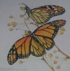 Fine Art Watercolour of Monarch Butterflies By Darren Graham of Ephraim Art Studio