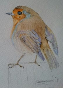 Fine Art Watercolour Of An Irish Robin Redbreast By Darren Graham of Ephraim Art Studio