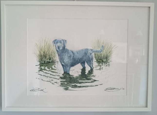Framed Fine Art Watercolour Commission of A Dog Pet Portrait By Darren Graham of Ephraim Art Studio
