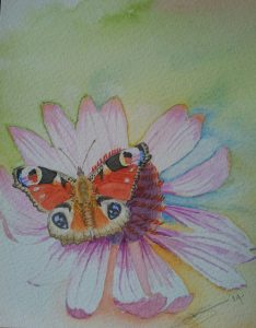 Close Up Of Fine Art Watercolour of A Peacock Butterfly By Darren Graham of Ephraim Art Studio
