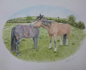 Fine Art Watercolour of Horses Grooming By Darren Graham of Ephraim Art Studio